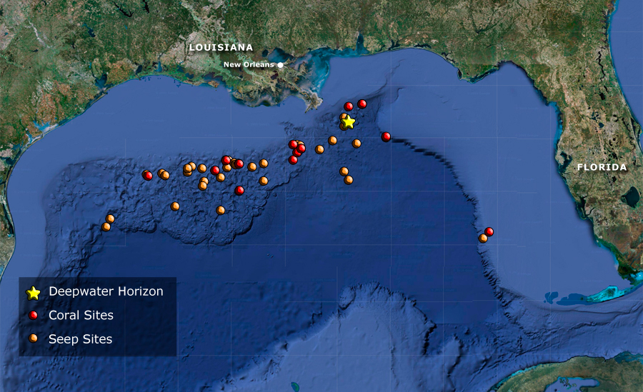 Oil Rigs In Gulf Of Mexico Map.Dive And Discover Expedition 13 Gulf Of Mexico
