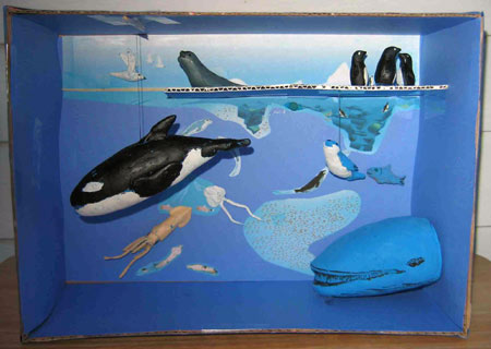 An example of a student model of the Antarctic Ecosystem. (Photo courtesy Carolyn Sheild, Jonas Clarke Middle School in Lexington, MA)