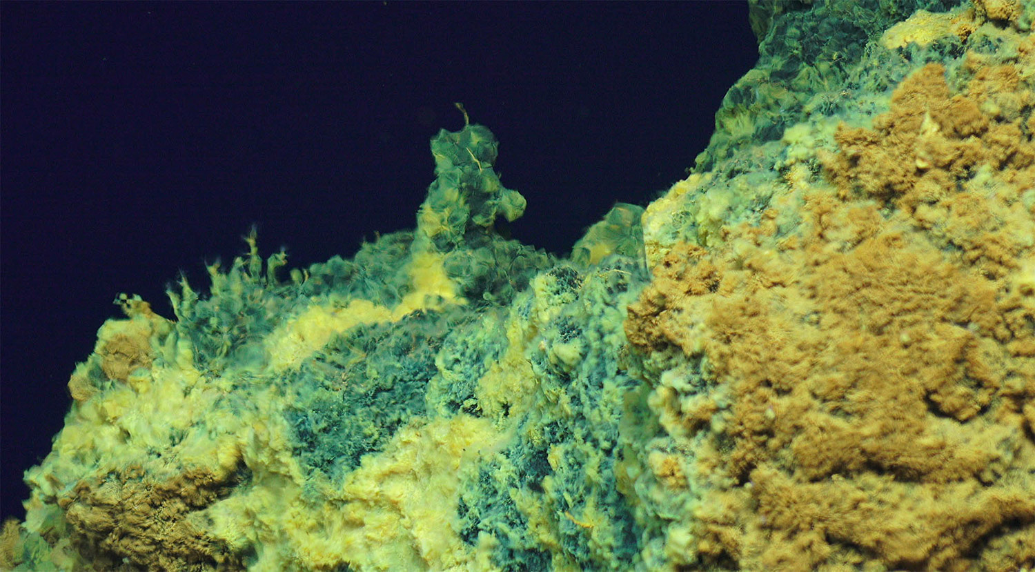 Microbes like these are able to survive in conditions that humans and many other organisms would consider far too hostile to life. (Anna-Louise Reysenbach, chief scientist, Portland State University; Funder, NSF; ROV Jason. © Woods Hole Oceanographic Institution)