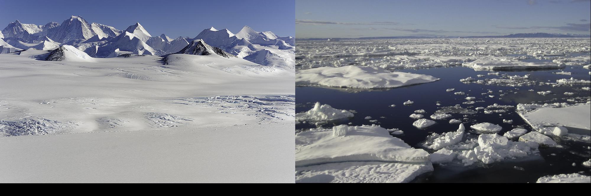 Comparing Polar Regions