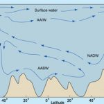 Part of the Global Conveyor in the Atlantic Ocean.  Waters formed around Antarctica flow north, while waters from the North Atlantic flow south.