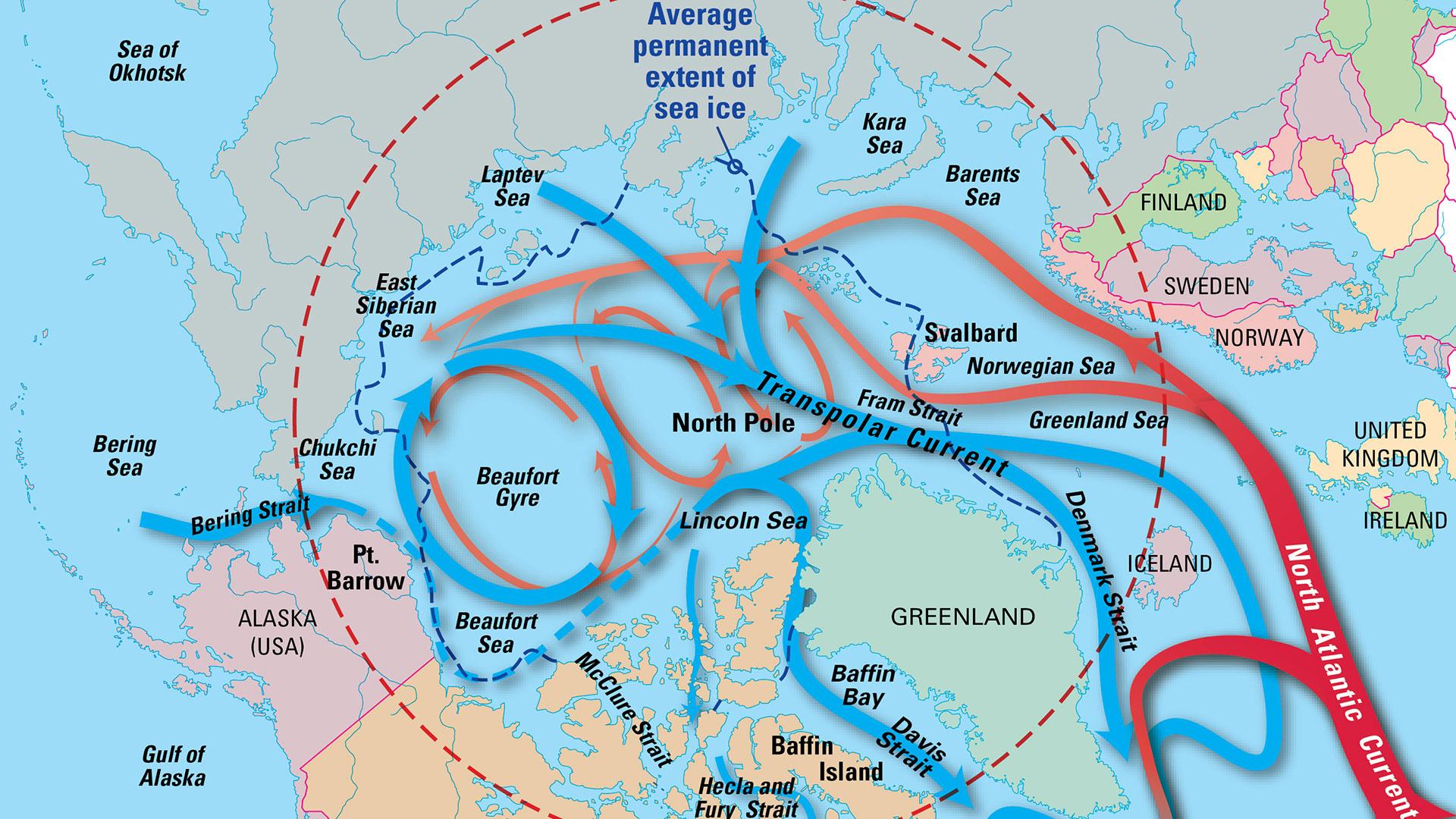 arctic circulation