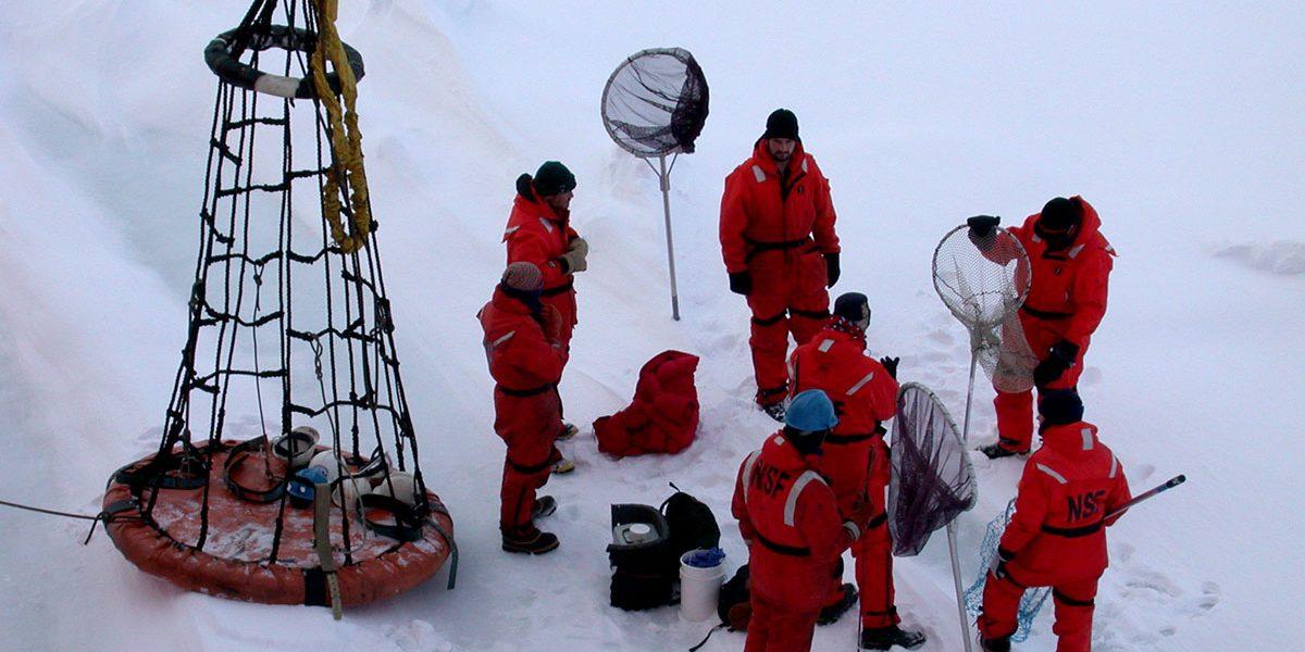 people working on ice